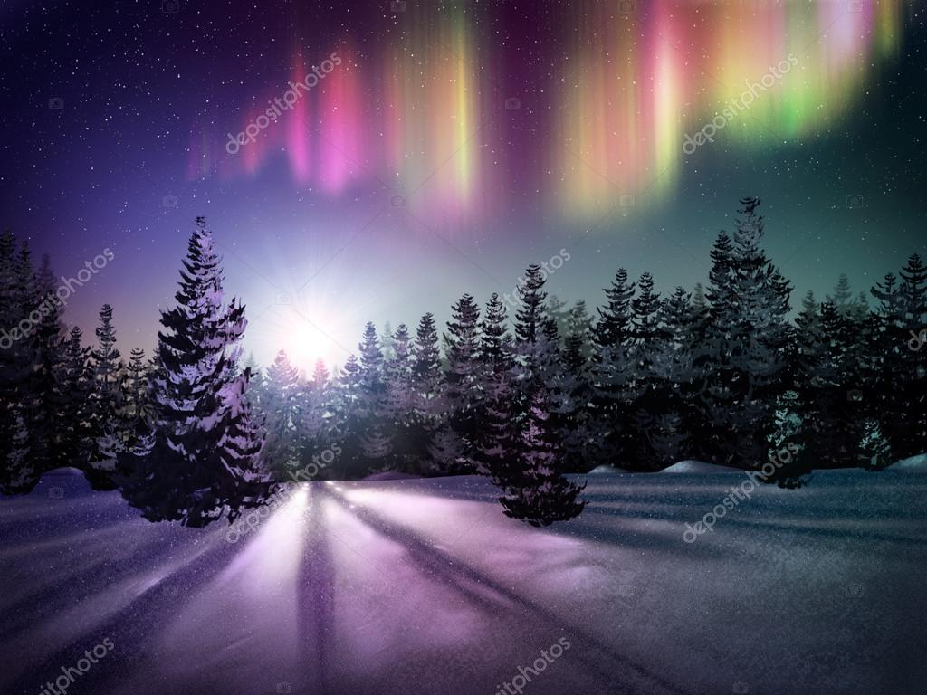 Northern lights over field