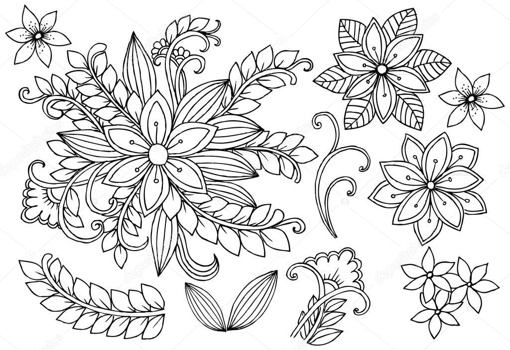 Conjunto de flores blanco y negro. Página de f elementos de diseño ...