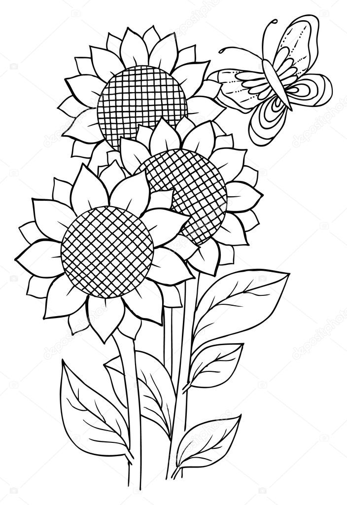 Dibujos: girasol para dibujar | Girasol y mariposa para colorear ...