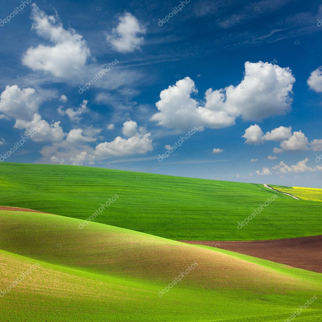 Abstract Colorful Fields and Sky Background