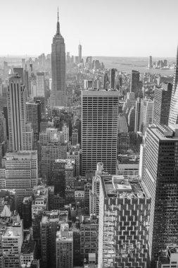 New York City, Manhattan downtown skyline, black and white