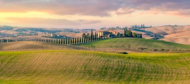 Majestic Panoramic view of typical Tuscany rural landscape. Beautiful hills at the sunrise time, cypresses, fields and countryside road. Italy, Europe stock vector
