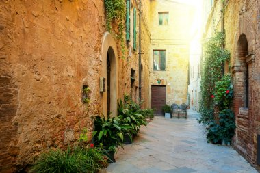 Small Old Mediterranean town - lovely Tuscan street in Pienza with sunshine and flowers, Italy stock vector