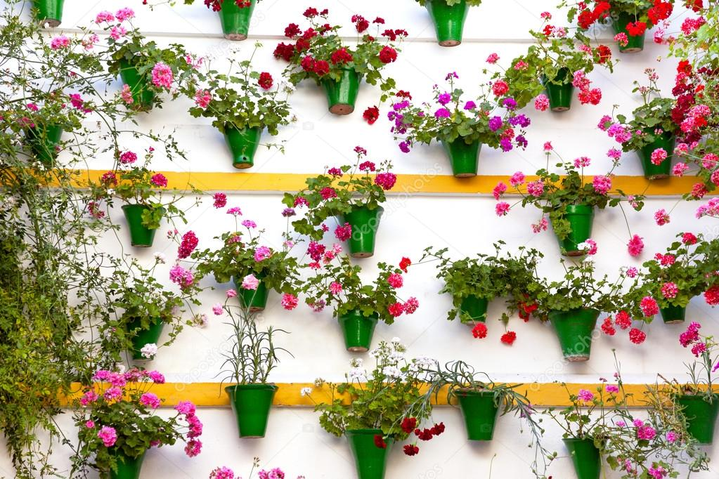 Flower Decoration of  the Wall - Old European Town, Cordoba, Spa