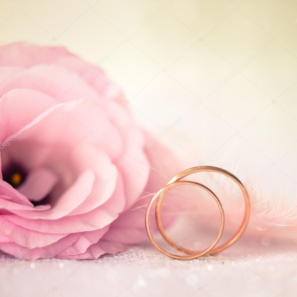 Love Wedding Background with Gold Rings and Beautiful Flower — Stock ...