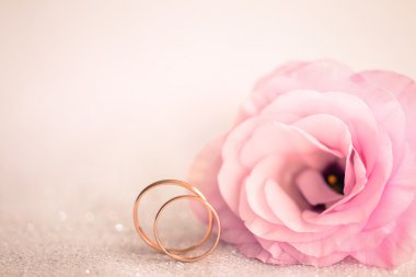 Gentle Pink Wedding Background with Rings and  Flower