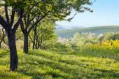Krajina Krajina na ráno