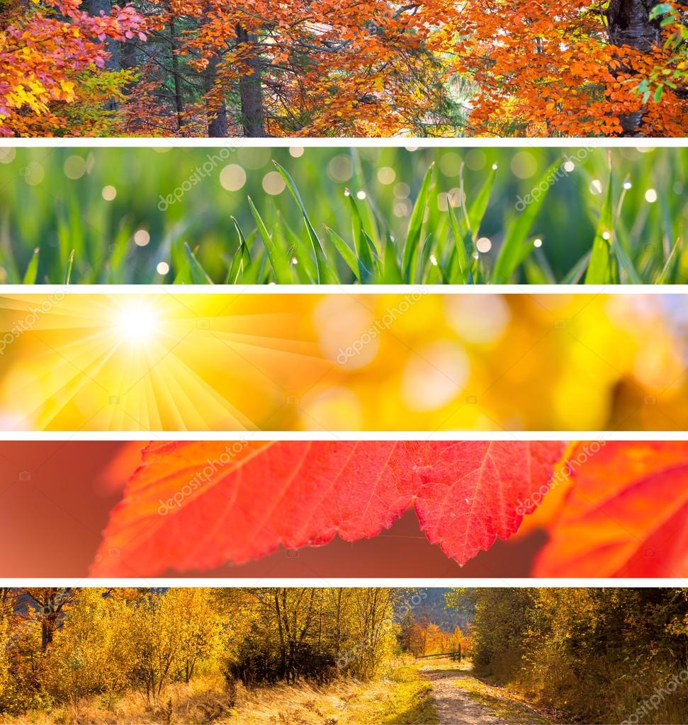 Collection of Autumn Headers -  fall season abstract  background
