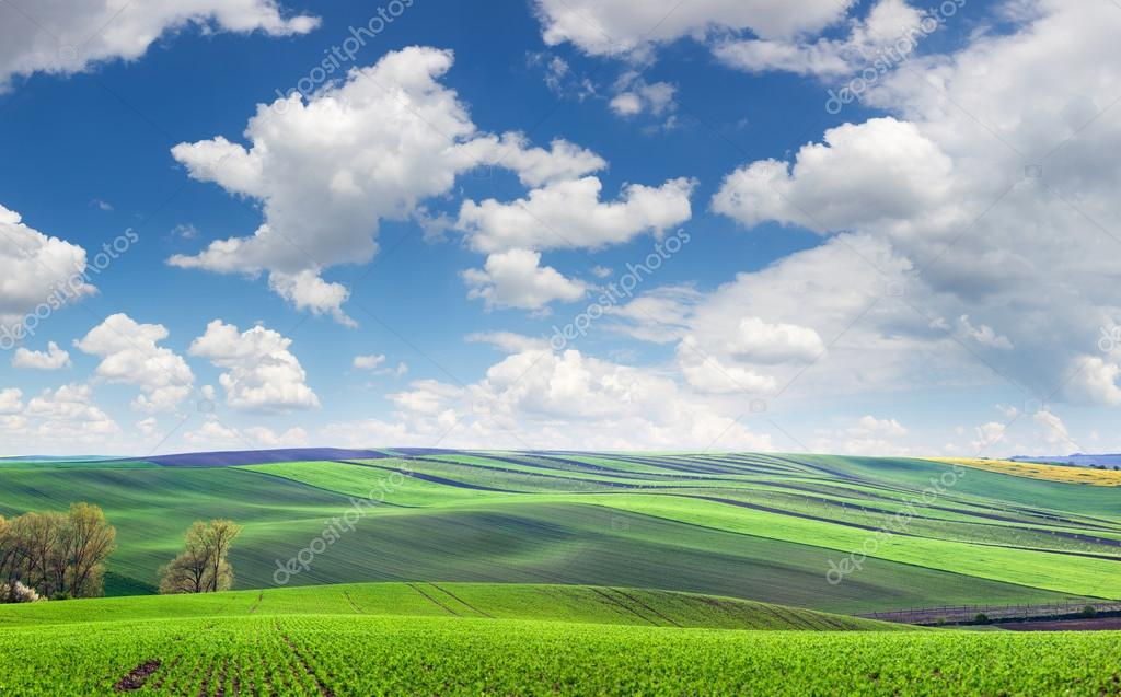 Wonderful panoramic view of fields in beautiful colorful and str