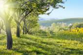 Sunny Krajina Krajina na ráno