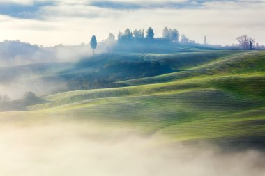 Magically Foggy Valley in the morning landscape, Tuscany, Italy, Europe stock vector