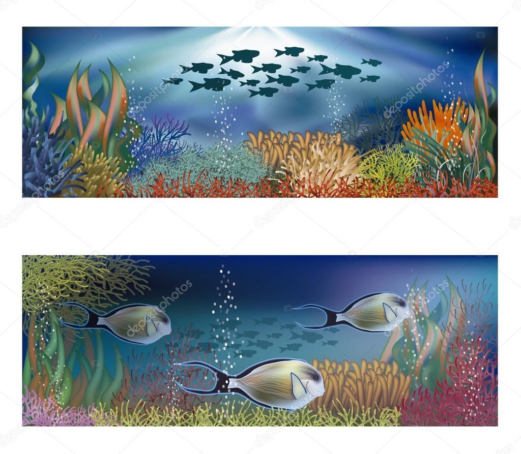 Underwater banners with tropical fish, vector illustration