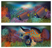Fotografie Underwater banners with tropic fish, vector illustration