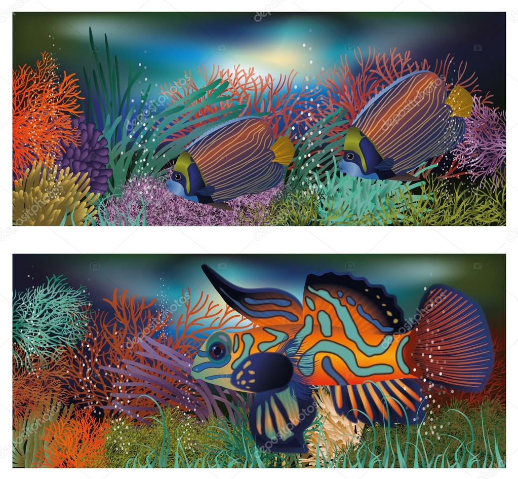 Underwater banners with tropic fish, vector illustration