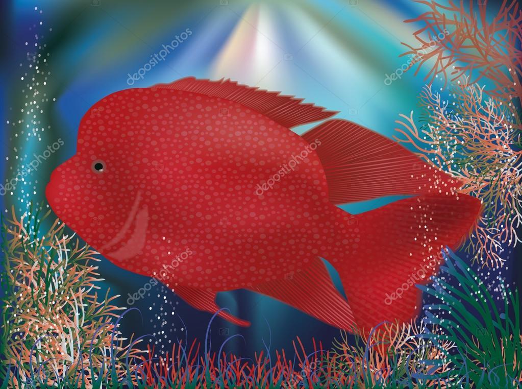 UnderwatUnderwater wallpaper with red tropical fish, vector