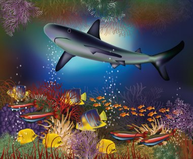 Underwater wallpaper with shark and tropical fish, vector illustration