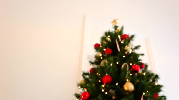Christmas tree and gold star