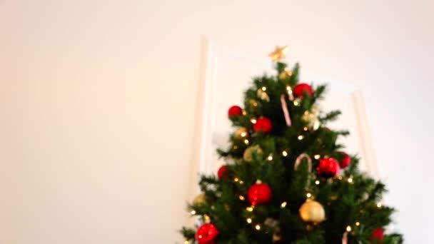 Vánoční strom a Zlatá hvězda