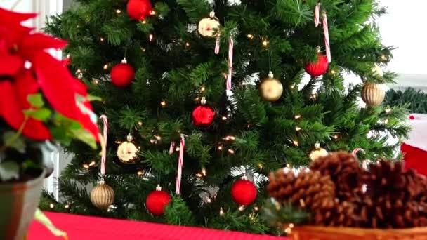 Vánoce a nový rok dárky a dekorace