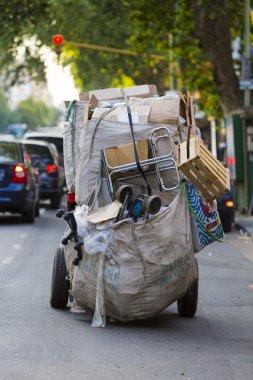 Life of a Cartonero in Buenos Aires