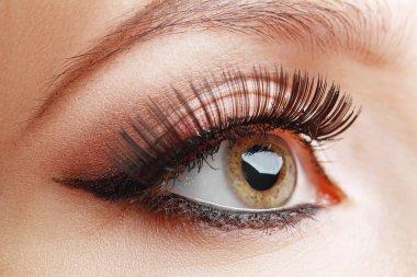 Closeup of beautiful eye with glamour makeup stock vector