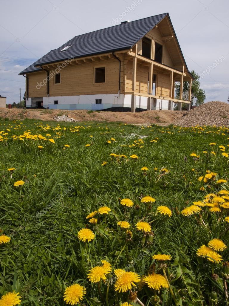 Bau Eines Holzhauses Auf Einer Wiese Mit Blühenden Löwenzahn Bedeckt U2014 Foto  Von Rparys