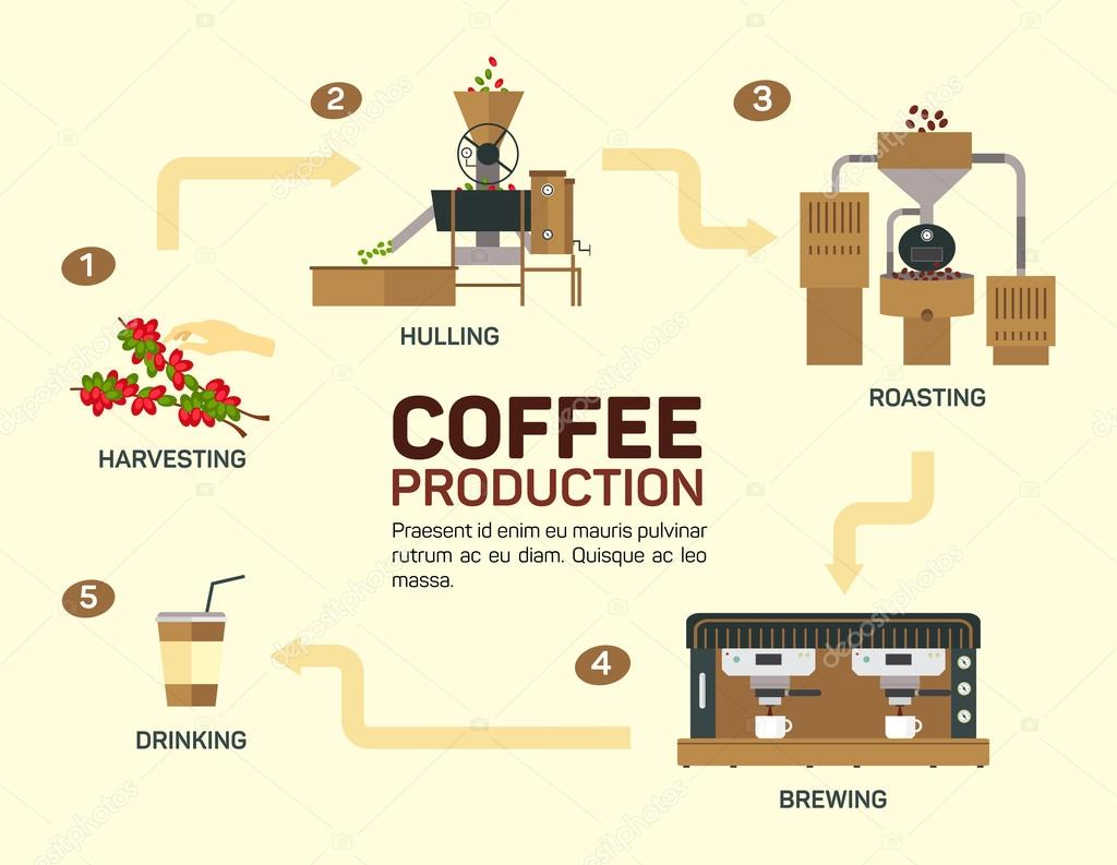 Vector illustration of coffee. Drink graphic, cup and infographic, cappuccino