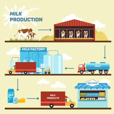 Vector illustration - stages production and processing of milk