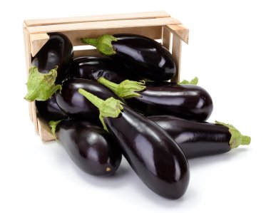 Eggplants (Solanum melongena) in wooden crate
