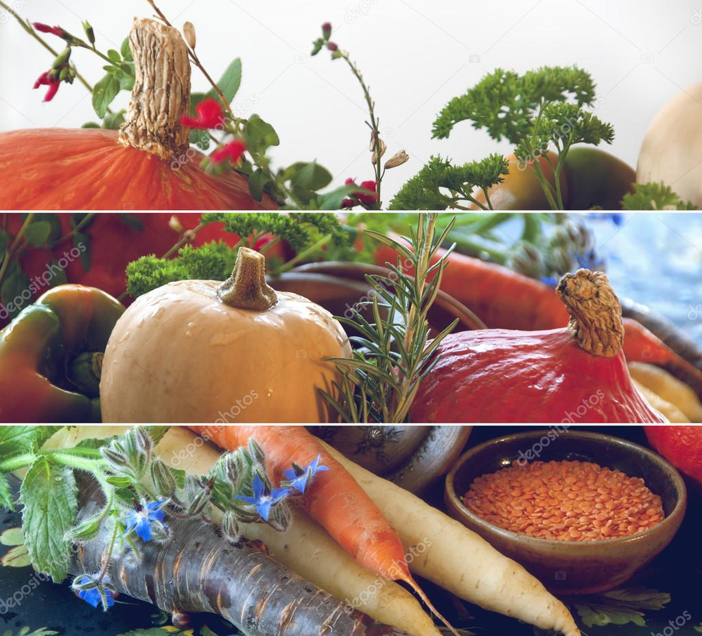 Pumpkins, carrots, seeds, butternut squash and herbs - Still life composition with seasonal vegetables of autum