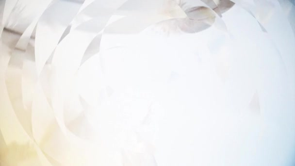 Animation with feathers - rotating patterns and reflections effect - Full HD - long cut