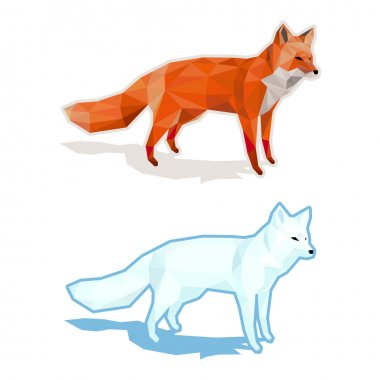 Red and white foxes isolated on white with shadow - low poly vector