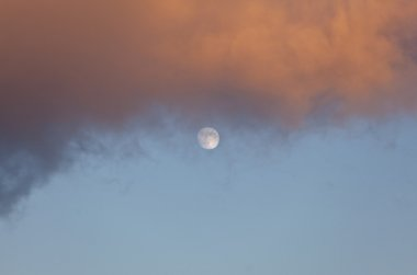 Full Moon at Daylight