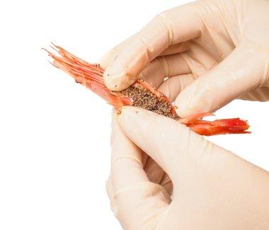 Hands peeling pink boiled shrimp
