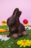 Fotografie Ostern-Hintergrund mit Kaninchen