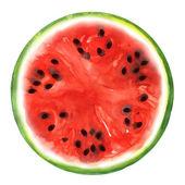 Meloun izolovaných na bílém pozadí