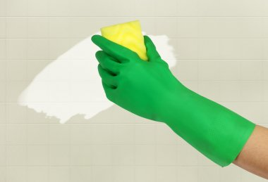 Hand in green glove with sponge