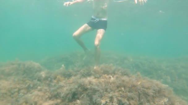 Bärtiger kaukasischer Freitaucher ohne Unterwasserausrüstung taucht unter Wasser und blickt in die Kamera