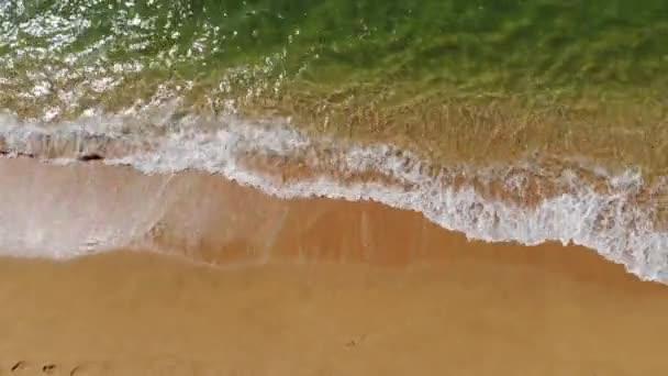 4K letecký pohled na zlatou písečnou pláž a zpěněné vlny za slunečného dne. Nejlepší ilustrace přímořské nebo oceánské dovolené