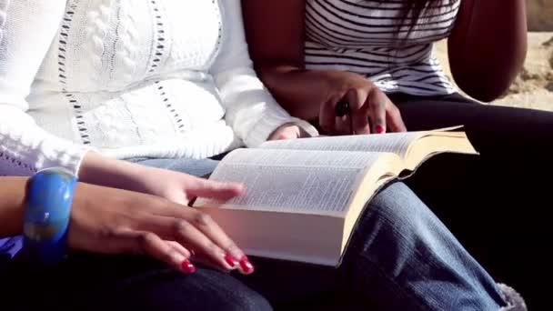 přátel čtení bible na pláži