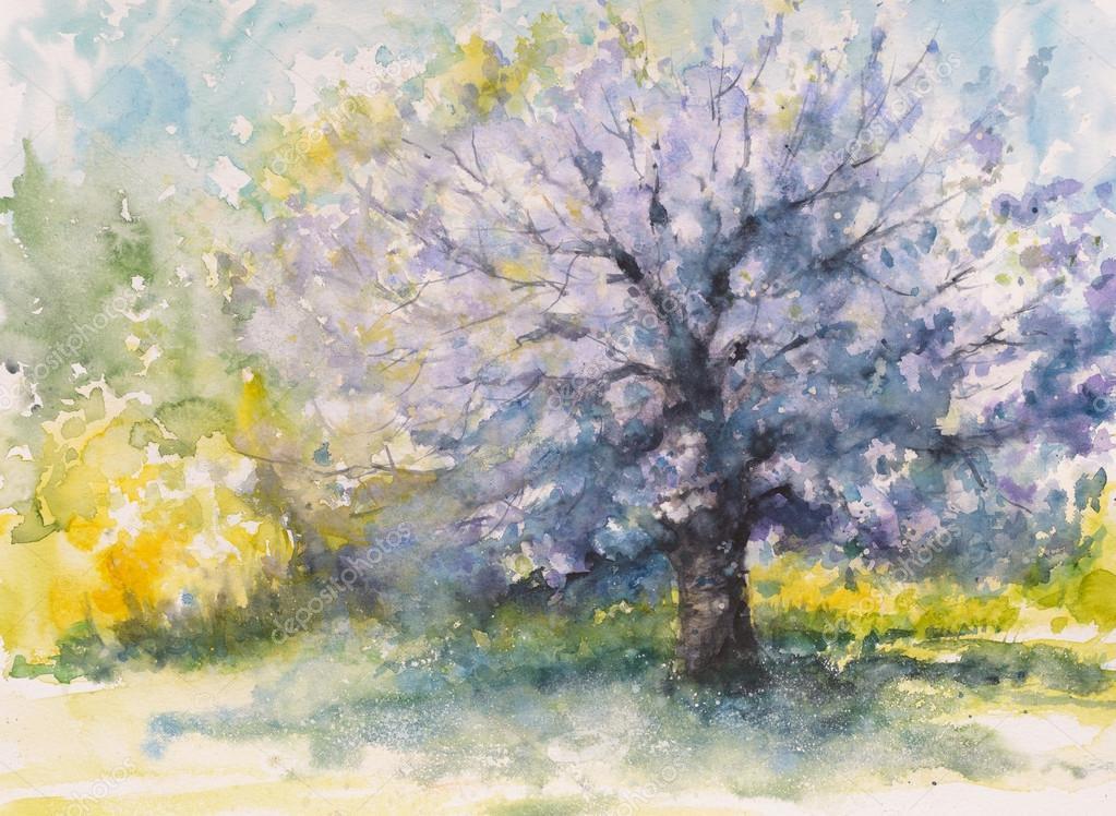 Albero di ciliegio in fiore foto stock deepgreen for Albero ciliegio
