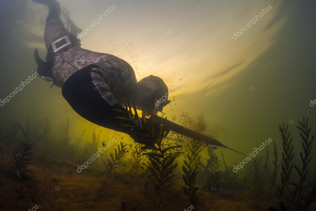 Man with speargun diving