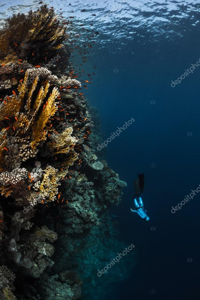 Lady free diver in the tropical sea