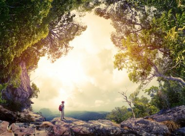 Hiker with backpack standing on the rock surrounded by lush tropical forest stock vector