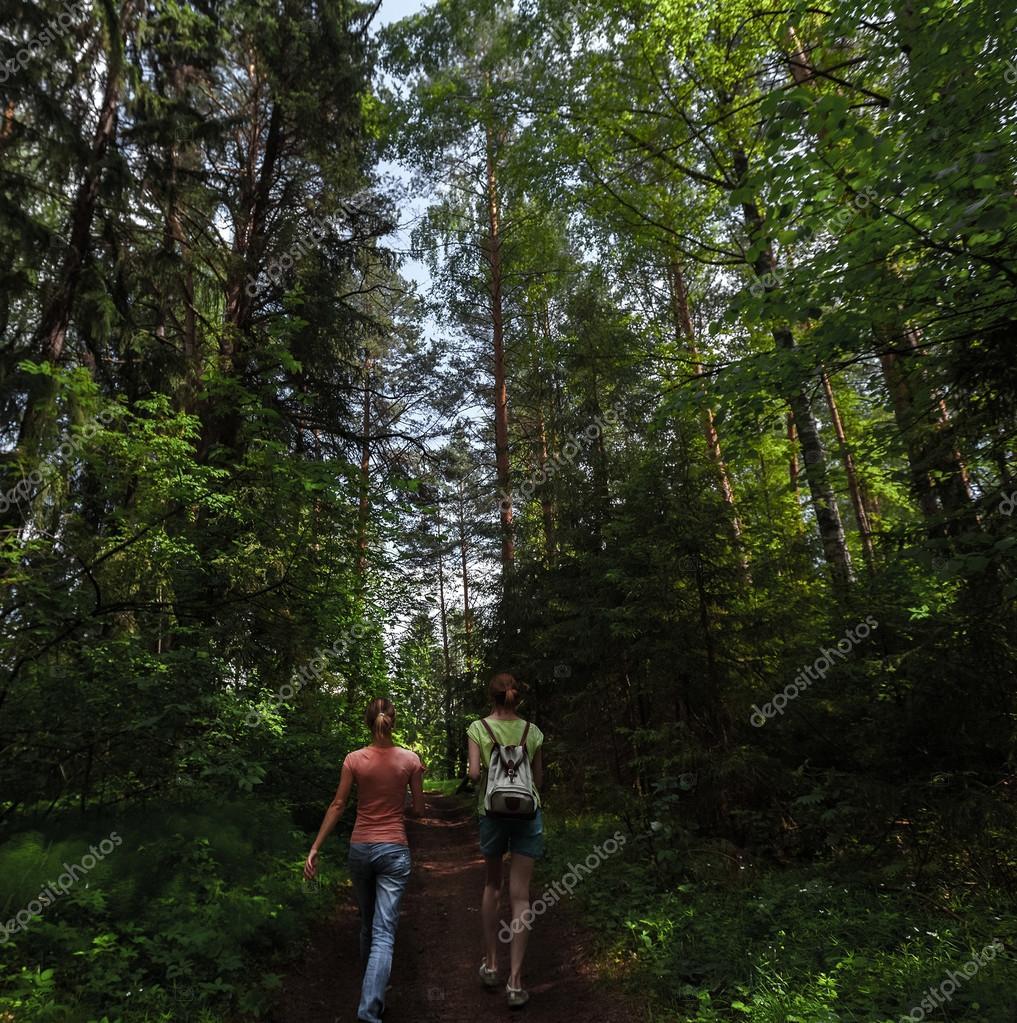 Фотообои Туристы в лесу