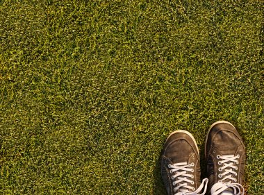 Grass of field