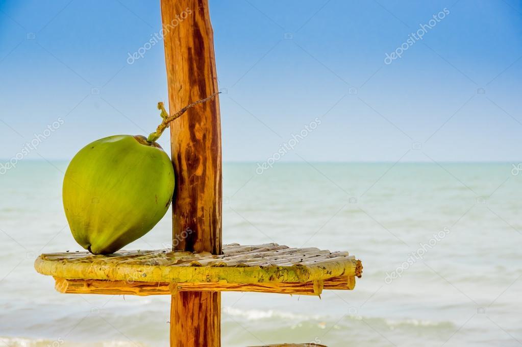 b1004aff0bfe Bir masa kulübe denizin içinde belgili tanımlık geçmiş livingston Guatemala  ile mükemmel Hindistan cevizi — pxhidalgo ...