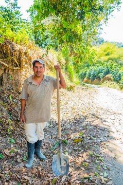 Worker in a coffee plantation farm, Colombia