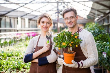 Happy attractive woman and man gardeners holding small mandarine tree