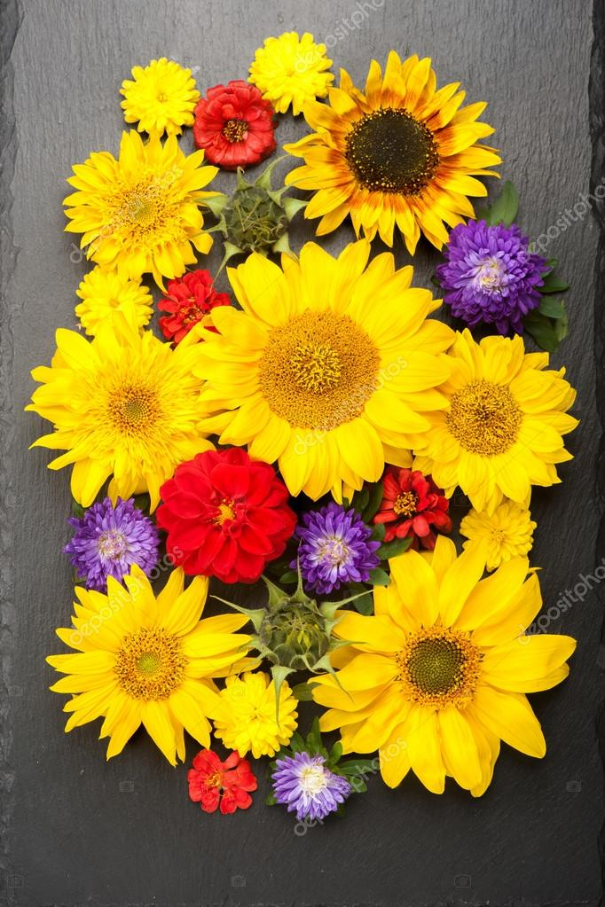 Autumn flowers and sunflowers. Colorful floral background, top view